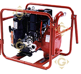 Spare parts-GENELEC-Motor Pump Set