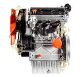 Moteur Lombardini LDW 1003 Diesel