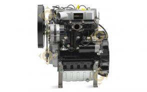 Moteur Lombardini LDW 1603 / KDW 1603 Diesel