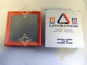 Spare parts Air Filter Cartridge 2175134 For Engines LOMBARDINI, by marks LOMBARDINI
