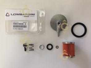 Pièces détachées Filtre Combustible 3730028 Pour Moteurs Lombardini, de marque Lombardini