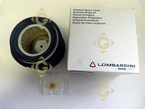 Spare parts Air Filter Cartridge 2175254 For Engines LOMBARDINI, by marks LOMBARDINI