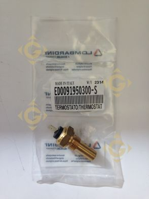 Spare parts Thermostat 9195030 For Engines LOMBARDINI, by marks LOMBARDINI
